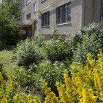 Ул. Рабочая, дом 48